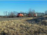 CN 2901 and CN 2829