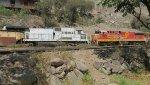 FCCA locos EX NS 8596 8566
