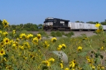 NS 9036 waits at Ellinor siding
