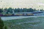 Lead locos on coal train