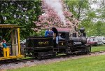 Spring; and a young man's fancy turns to thoughts of narrow gage geared steam locomotives