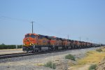 BNSF 7303 Takes Charge of a 9-Engine Lashup!