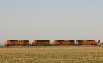 BNSF 4427  6719  5057  and  4874