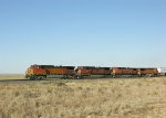 BNSF 5215  1036  and  1073