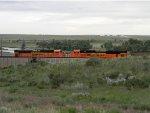 BNSF 8495/9058