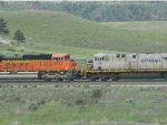CREX 1201/BNSF 8753