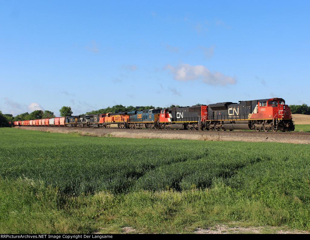 CN 8801 U76171-31