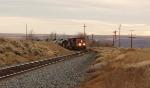 CP 9567 North