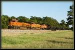 BNSF 8202, BNSF 4142, BNSF 5803