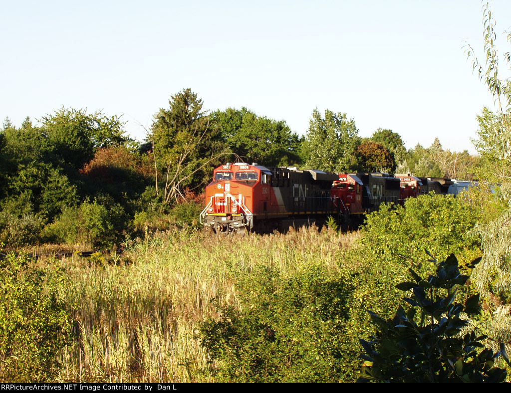 CN 3801