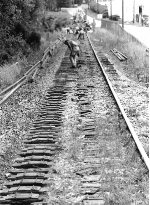 """""""I've been working on the railroad..."""""""