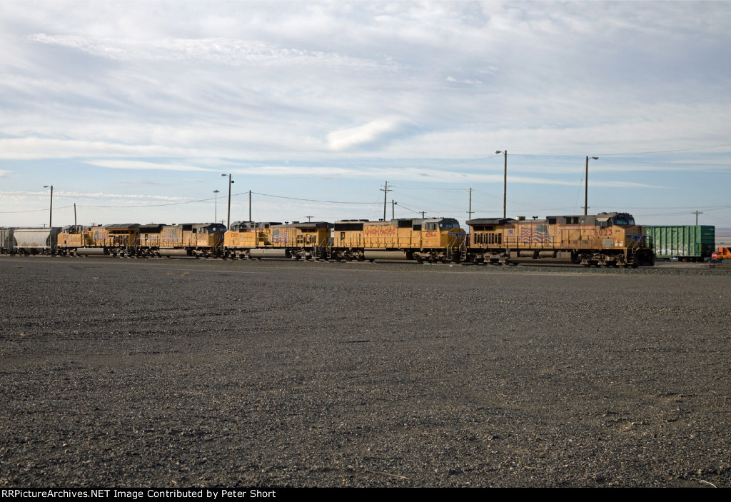 UP6023, UP4564, UP7285, UP4977 and UP2702