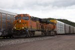 BNSF3729 and BNSF6587
