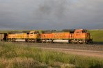 BNSF8979 and BNSF9960