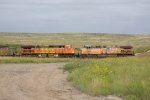 BNSF4004 and UP5683