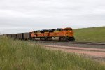 BNSF9000 and BNSF9375