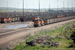 BNSF6384, BNSF9006, BNSF560 and others in the yard