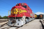 Warbonnet in Yard 2