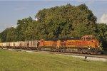 BNSF 6348 On CSX K 811 Southbound