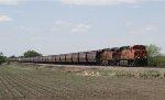 BNSF 7594 Brings A Loaded Grain Train East