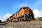 BNSF 6681 leads a grain train south