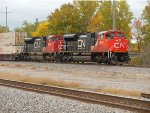 CN 8954 and CN 8848