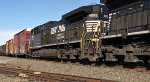 NS 4092 is new to rrpa.