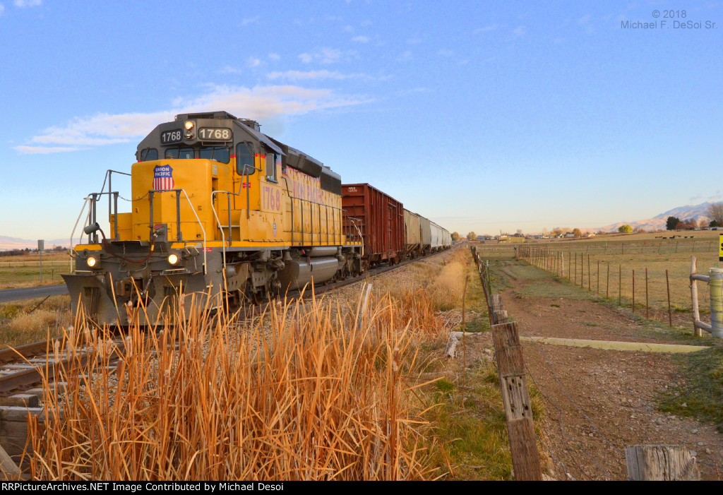 """""""Happy Birthday To Me""""  UP SD-40N #1768 leads the southbound Cache Valley Local (LUG-41D) preparing to cross W. 4400 S in Hyrum, UT. on my 60th birthday, November 8, 2018"""