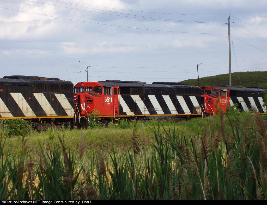 CN 5511