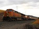 BNSF 5658 (3)