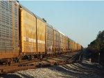 NS 8025 leads auto rack train
