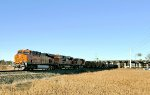 BNSF 7376 South empty coal at MP 38 Bellingham Sub