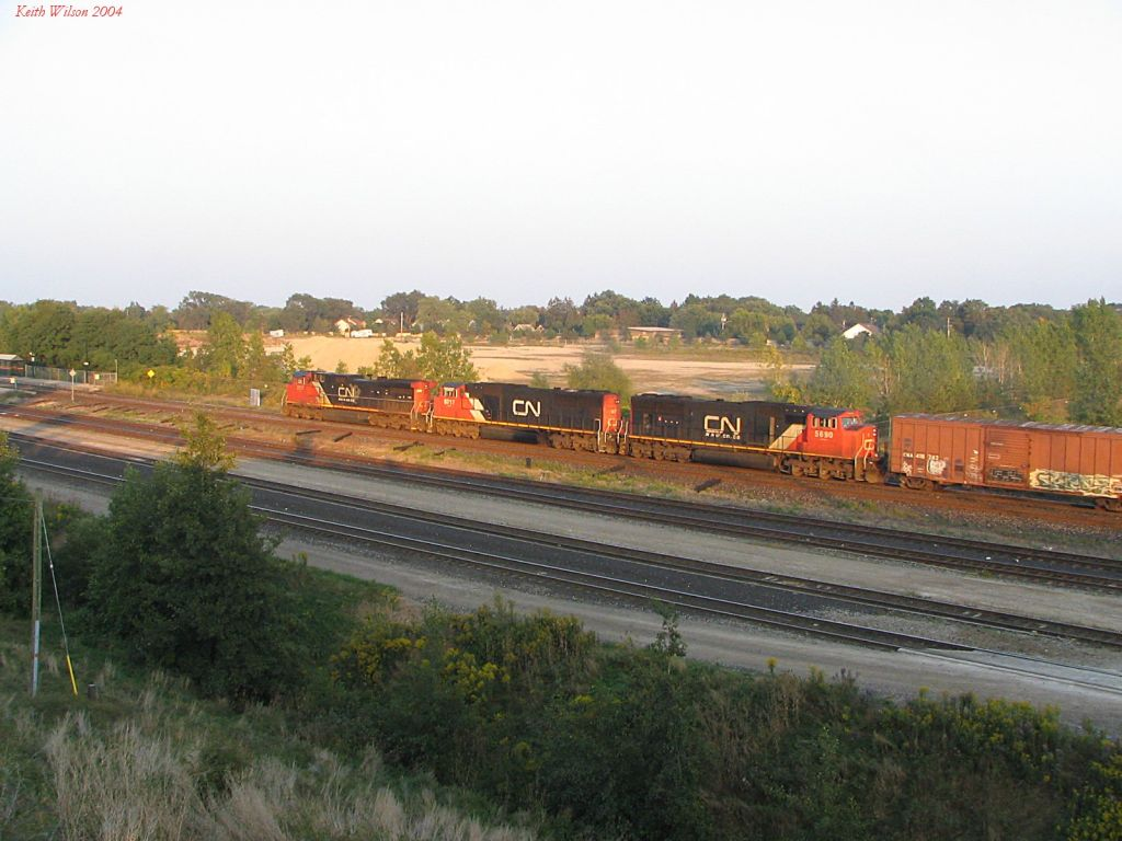 CN 2517+CN 5717+CN 5690 catching the late evening sun