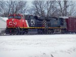 CN 2286 and BCOL 4650