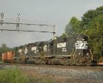 NS 5123 leads NS-95Q