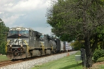 NS 7506 leads NS-119