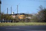 Robstown TX