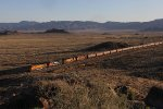 BNSF, FXE and KCS power lead grain loads west