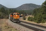 BNSF 4225 & 6346 bring the H-PHXBEL1 east