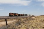 BNSF 8192 leads the Z-WSPNBY8 west across the wide open spaces west of Winslow