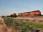 BNSF 5103, 5289, & 334