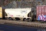 CSX 243264