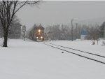 On a snowy Thursday (2)