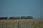 Utah Railway 5002 KYLE 3099