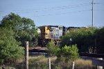Brownsville TX