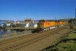 BNSF 4995 S/B