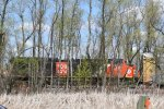 CN 3150 in the Trees.