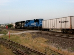 NS 2564 and NS 2646