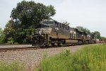 NS 8183 takes train 21M through milepost 116