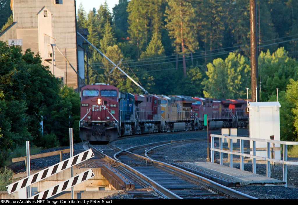 CP8842, CEFX1058, CP8887, UP2721, CP9775 and CP8512